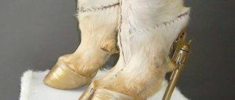Туфли-копыта: фото